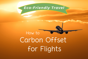 How to Carbon Offset For Flights