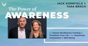 The Power of Awareness Jack Kornfield Tara Brach