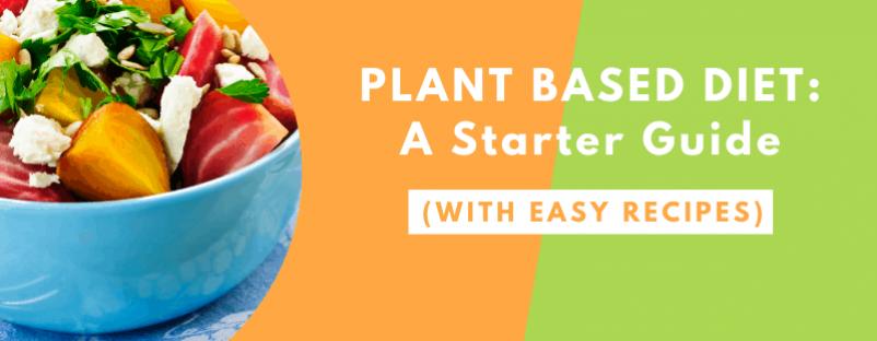 Plant based diet blog post image